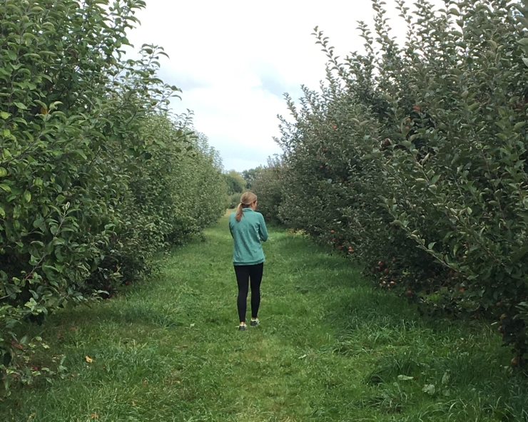My sister walking down a row of apple trees